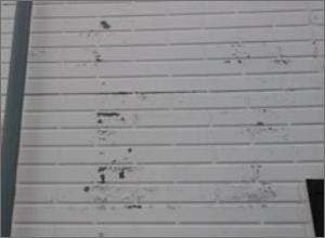 外壁の塗装がはがれている