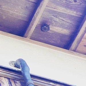 定期点検時に、ハチの巣……発見!!!!