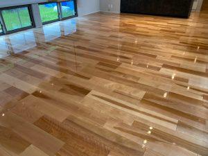 福山市 愛犬家の住まい床、壁、家具を傷・汚れから守るコーティング