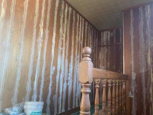 内壁を塗装仕上げに…リノベーション真っ最中‼